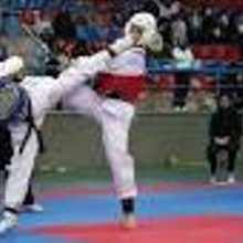 2 تکواندوکار گیلانی که به همراه تیم ملی نوجوانان دختر عازم قزاقستان محل برگزاری مسابقات قهرمانی آسیا شده بودند ، به مقام قهرمانی رسیدند.