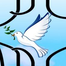 آزادی 116 زندانی واجد شرایط از زندانها با کمک خیرین/ پرداخت عیدی به یکهزار خانواده زندانی به مناسبت میلاد امام علی (ع)