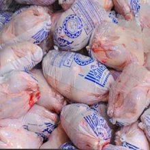 مرغ تاریخ گذشته منجمد در رستورانهای رودبار
