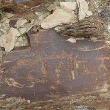 کشف چندین قطعه از لوحههای سفالی تدفینی با نقوش گوزن، بز و درخت در محوطههای گورستان اشکانی ، مهمترین یافته گروه باستانشناس پس از 101 روز بررسی