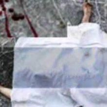 جسد در سرویس بهداشتی کیاشهر :جسد متعلق به مردی 35 ساله ساکن یکی از روستاهای اطراف آستانه اشرفیه که حدود پنج ساعت قبل خودروی وی مقابل درب بقعه مشاهده شد