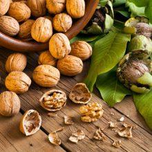 گردو منبع غنی از اسیدهای چرب امگا-۳ و مواد مغذی دیگر است و مصرف آن به میزان متعادل خطر ابتلا به چاقی و دیابت را کاهش میدهد. همچنین این ترکیبات در کاهش