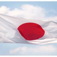 وزیر خارجه ژاپن در دیدار با ظریف، وزیر خارجه ایران خواستار کمک تهران برای افزایش فشار علیه کره شمالی و مهار برنامه هستهای این کشور شد.مهار کره شمالی
