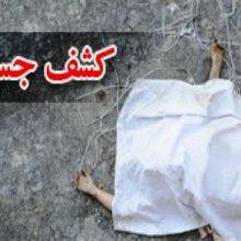 رئیس پلیس آگاهی استان همدان از کشف جسدی در حوالی میدان شیر سنگی شهر همدان خبر داد. پیدا شدن جسدی نیم تنه در کنار شیر سنگی همدان