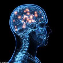 دانشمندان امریکایی در حال بررسی امکان درمان اوتیسم و کودکان مبتلا به اوتیسم با روش درمانی نورومدولاسیون (neuromodulation) هستند تا اختلالات اجتماعی