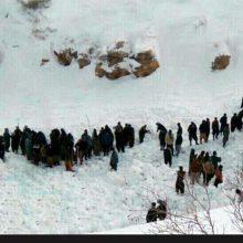 ک کولبر ۴۰ ساله براثر گرفتار شدن در بهمن در ارتفاعات «کانیخدای پیرانشهر» در استان آذربایجان غربی جان خود را از دست داده است. مرگ یک کولبر در ارتفاعات پیرانشهر