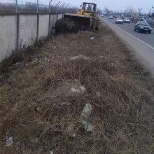 پاکسازی حاشیه دیوار فرودگاه ناحیه ۱ منطقه ۱