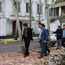 بازدید مهندس ناصر عطایی شهردار منطقه یک از پروژه های عمرانی سطح منطقه به روایت تصویر