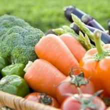 رژیم غذایی مدیترانهای یکی از الگوهای غذایی مفید و سالم به حساب میآید. این رژیم بر پایه خشکبار، غلات و روغن زیتون است و میزان گوشت قرمز با غذاهای فرآوری شده؛ سلامت قلب و عروق