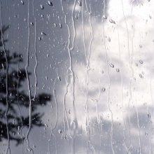 سرپرست اداره کل هواشناسی استان گیلان از کاهش دما، وزش باد و بارندگی از ظهر جمعه در گیلان خبر داد. بارندگی در گیلان