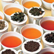 همه ما از نوشیدن یک فنجان چای داغ یا هرازگاهی دمنوش گیاهی لذت میبریم. اما این نوشیدنیهای لذت بخش چه فواید سلامتی برایمان دارند؟ در ادامه به بهترین چایهای مناسب بدن