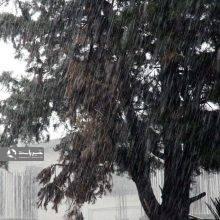 سازمان هواشناسی پیرو اخطاریه ای از جاری شدن سیل در برخی نقاط گیلان خبر داد.