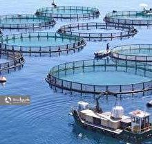 قفس های غوطه ور برای نخستين بار در خاورمیانه در دریای خزر برای پرورش ماهی با همکاری ایران و نروژ در گیلان نصب شده است. قفس های غوطه ور در درياي خزر