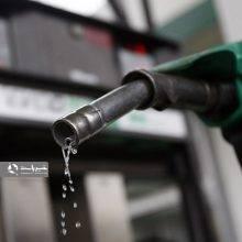 یک عضو کمیسیون انرژی مجلس شورای اسلامی گفت: دولت می تواند بر اساس قانون هدفمند سازی یارانهها نرخ سوخت را ۵ تا ۱۰ درصد افزایش دهد