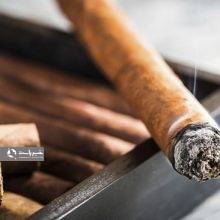 بر اساس موضوع ماده ۲۲ و ۵۳ قانون مبارزه با قاچاق کالا و ارز، قیمت خرده فروشی سیگار در سال جاری اعلام شد. بر این اساس هر نخ سیگار از ۷۵ تا حدود ۱۱۵۰ تومان است.