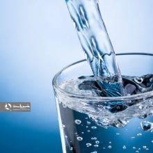 مسوول آموزش همگانی انستیتو تحقیقات تغذیهای وصنایع غذایی کشور، نوشیدن میزان کافی آب در فصل تابستان را ضروری دانست. رفع عطش