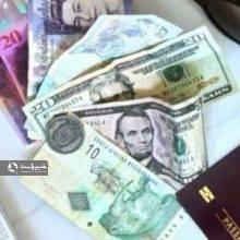 پرداخت یارانه ارزی به مسافران کشورهای خارجی باعث شد تا تقاضا برای سفر به کشورهای خارجی و روند خروج ارز از کشور افزایش یابد. دولت برای اصلاح این وضعیت،