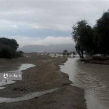 فرمانده یگان حفاظت محیط زیست گیلان گفت: با تخریبکنندگان رودخانهها در گیلان و پیمانکاران متخلف بهشدت برخورد میشود.