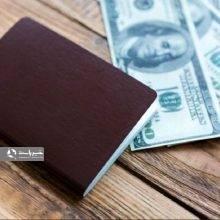 فروش ارز مسافرتی در شعب بانک ملی از امروز