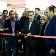 احمدی در مراسم افتتاح دوازدهمین نمایشگاه الکامپ