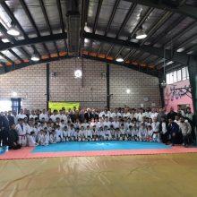 استاژ فنی و تمرین مشترک با حضور پیشکسوتان و قهرمانان و مربیان کاراته استان برگزار شد