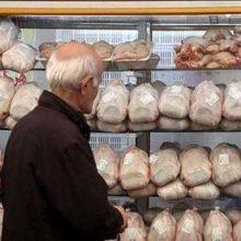 صادرات مرغ تا پایان ماه رمضان با ابلاغ رئیس جمهور ممنوع شد