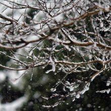 نفوذ سامانه سرد و بارشی به گیلان