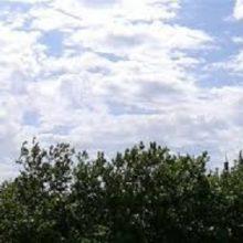 مدیر کل هواشناسی استان امروز گفت : شرایط جوی گیلان تا 22 روز آینده صاف تا نیمه ابری ، گاهی با افزایش ابر و وزش باد ملایم پیش بینی شد.
