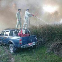 با توجه به گرمای شدید هوا و شرایط خاص منطقه پارک ملی بوجاق کیاشهر ۵ مورد حریق که اکثرا توسط افراد سود جو و فرصت طلب با نیت تصرف به انجام رسیده