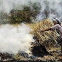 دود ناشی از آتش زدن کاه و کلش این روزها هوای گیلان را آلوده میکند.گیلان 238هزار هکتار اراضی شالیزاری دارد که در حال حاضر برداشت برنج از شالیزارهای ...