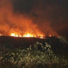 با بیان اینکه در برخی موارد آتش سوزی علفزارها در رشت جنب منازل مسکونی گزارش شده است، افزود: خوشبختانه تیم های اعزامی آتش نشانان از پیشروی و سرایت آتش