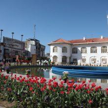 تصاویر زیبا و گل کاری خیابانها و میادین سطح شهر به مناسبت عید نوروز