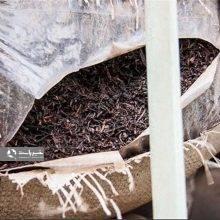 فرمانده انتظامی رودسر از کشف بیش از 8 تن چای فاسد در این شهرستان خبر داد. چای فاسد در رودسر