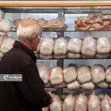 رئیس اتحادیه پرنده و ماهی، از افزایش قیمت مرغ به ۱۰ هزار و ۱۰۰ تومان خبر داد.