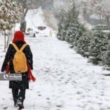 دبیرکل شورای عالی آموزش وپرورش گفت: تنها به شرط آغاز سال تحصیلی از شهریور ماه با تعطیلات ۵ روزه مدارس در فصل زمستان موافقت میکنیم.
