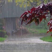 بارندگیها در گیلان شدت میگیرد | استقرار سامانه سرد و ناپایدار در منطقه